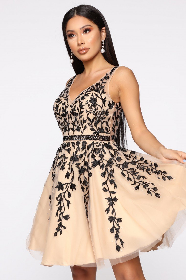 Feeling Heavenly Fit And Flare Mini Dress - Black